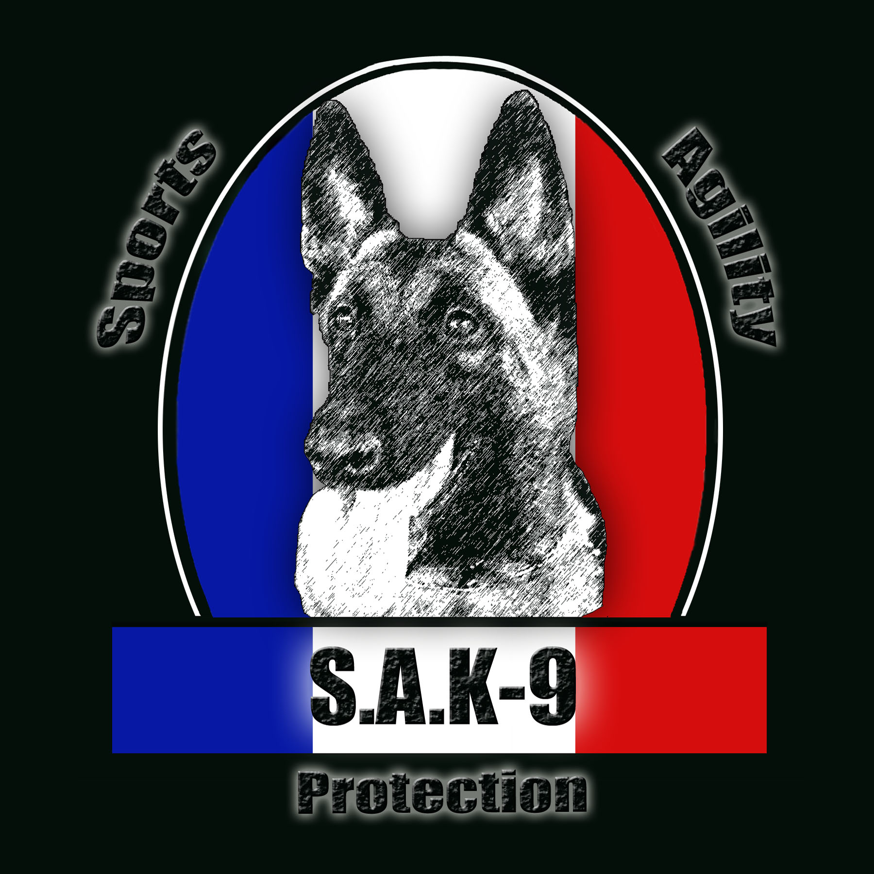 sak-9 protection dog